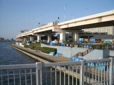 白髭橋から見た青テントの列