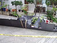 P8130353