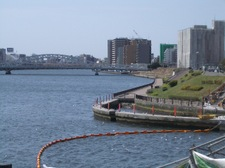 瑞光橋、オイルフェンス?のプール?とカモメ